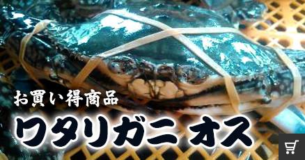 無選別牡蠣
